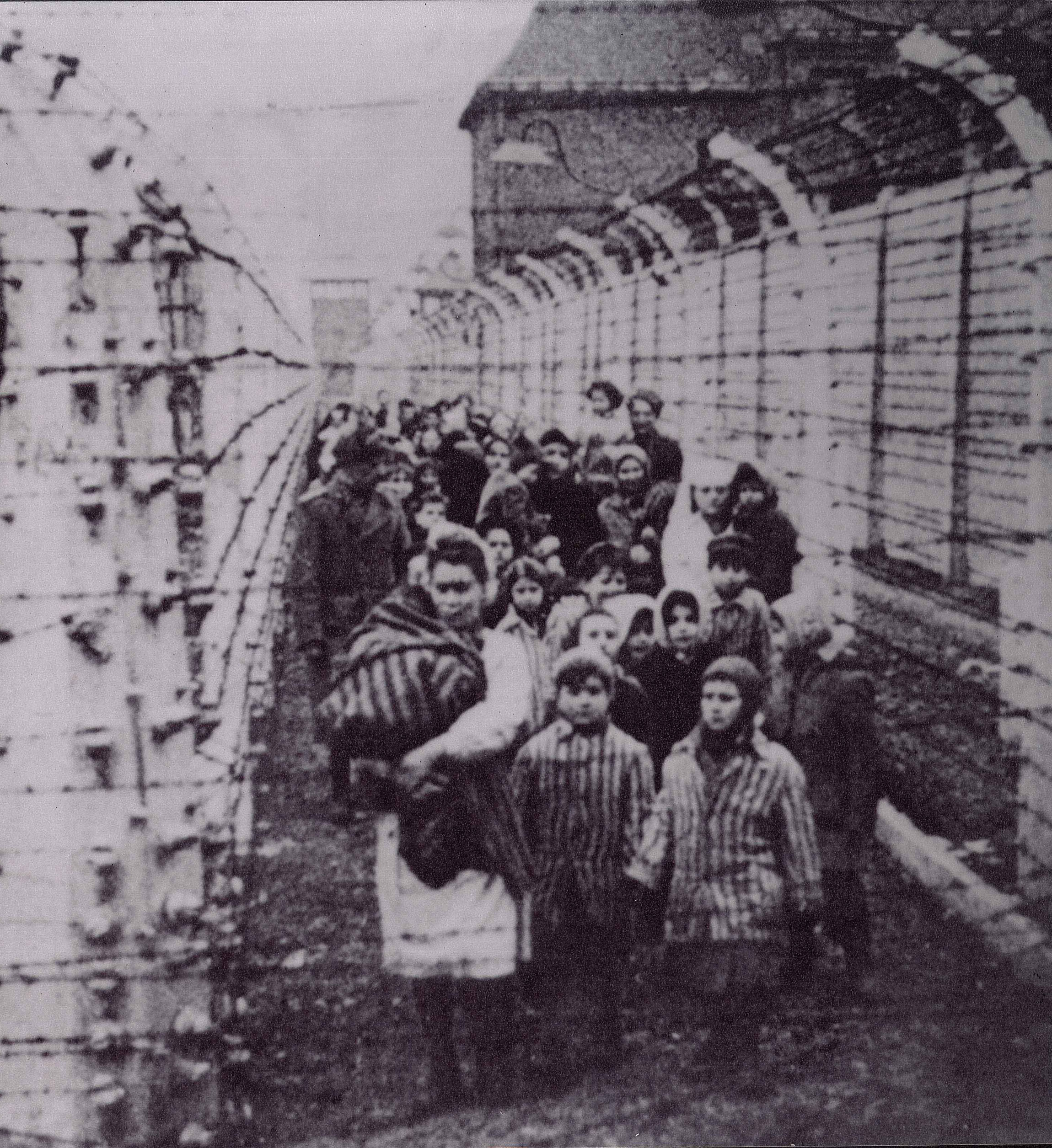 Auschwitz liberation photo