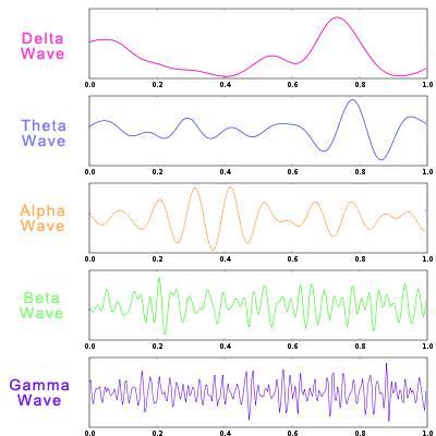 delta-theta-alpha-beta-gamma-brain-waves