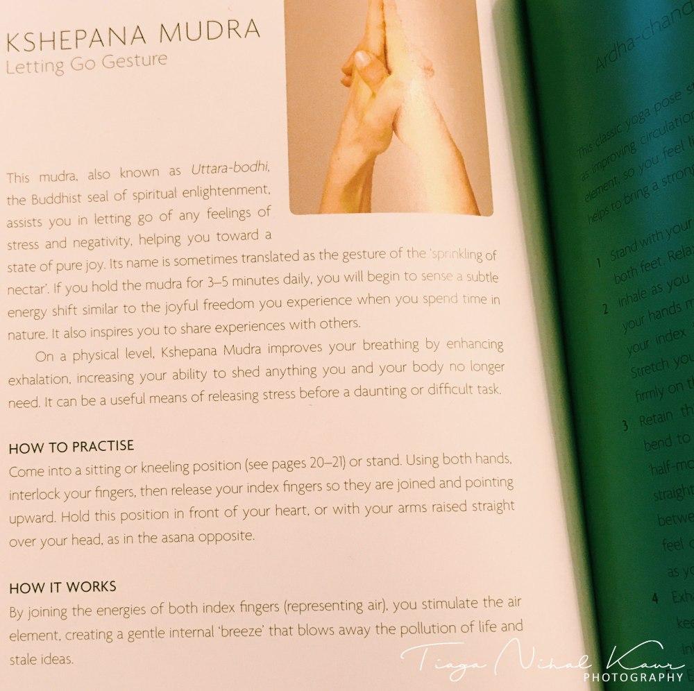 Kshepana Mudra by Tiaga Nihal Kaur