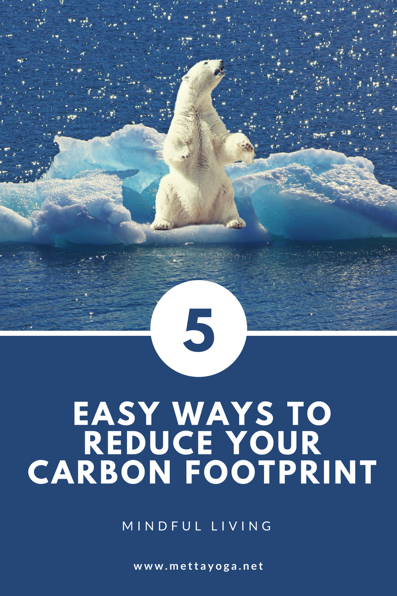 5 Easy Ways to Reduce Your Carbon Footprint, Metta Yoga, Kundalini Yoga, Environment, Climate Change, Global Warming, Carbon Footprint